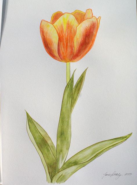 Painting OrangeTulip