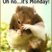 Monday-itis