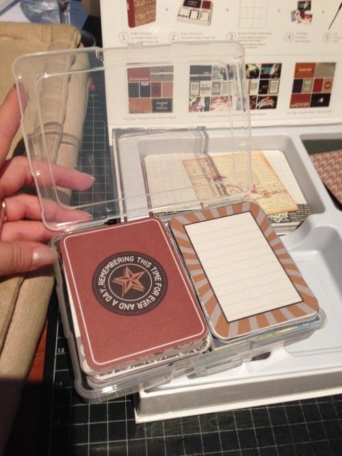 PL Cinnamon in Storage Box