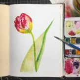Tulip Watercolour Challenge by Tania Scrapbook House